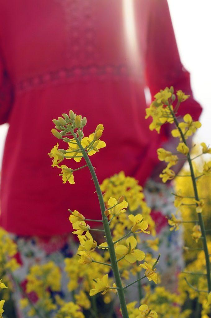 Żółty, ulubiony kolor wiosny